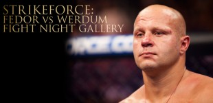 Fedor vs Werdum Fight Night