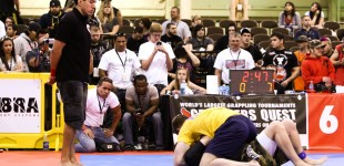 Grapplers Quest