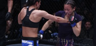 Jessica Penne vs Michelle Waterson