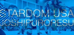Stardom USA: Japanese Women's Pro Wrestling