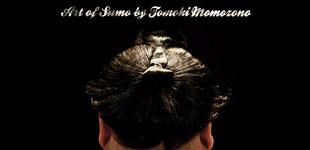Art of Sumo - Tomoki Momozono